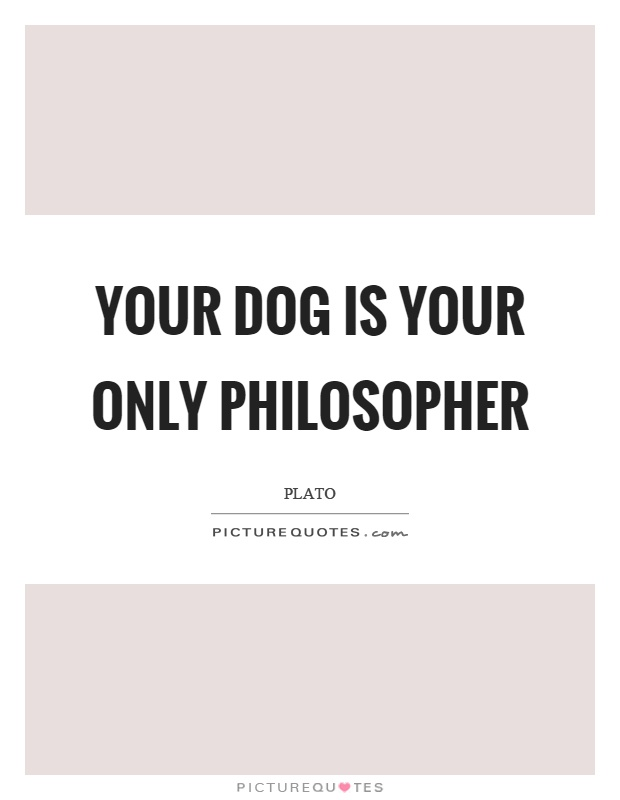 Your dog is your only philosopher Picture Quote #1