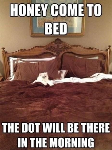 Honey come to bed, the dot will be there in the morning Picture Quote #1