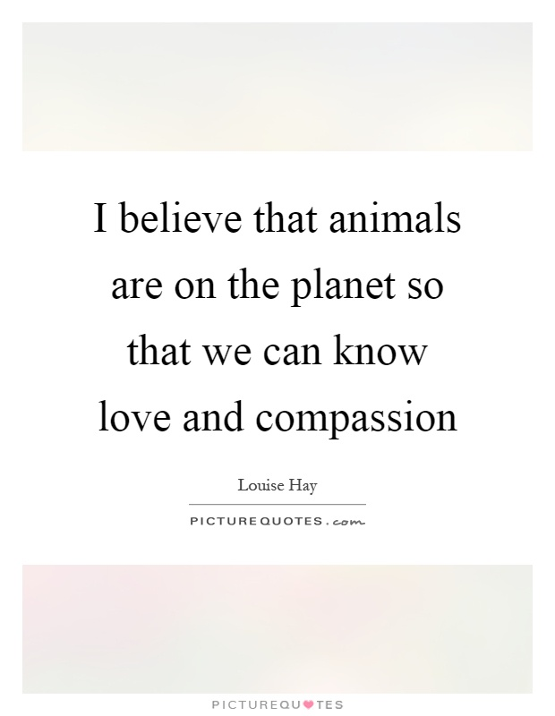 I believe that animals are on the planet so that we can know love and compassion Picture Quote #1