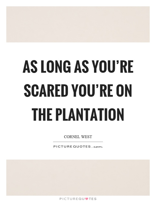 As long as you're scared you're on the plantation Picture Quote #1