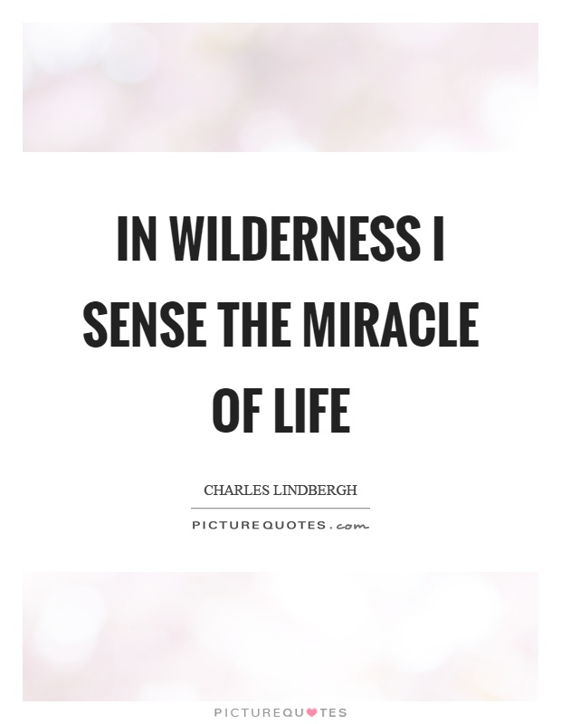 In wilderness I sense the miracle of life Picture Quote #1