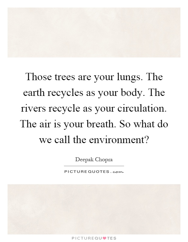 Those trees are your lungs. The earth recycles as your body. The rivers recycle as your circulation. The air is your breath. So what do we call the environment? Picture Quote #1