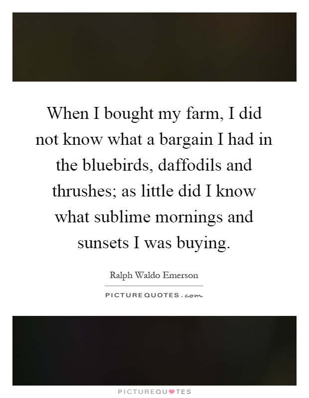 When I bought my farm, I did not know what a bargain I had in the bluebirds, daffodils and thrushes; as little did I know what sublime mornings and sunsets I was buying Picture Quote #1