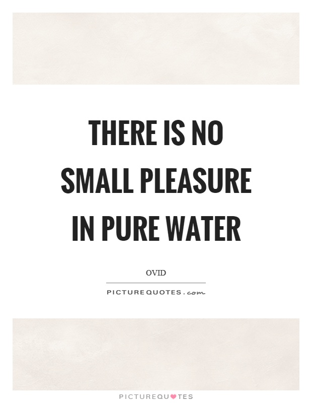 There is no small pleasure in pure water Picture Quote #1