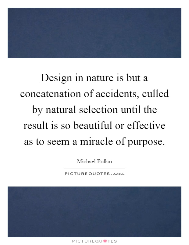 Design in nature is but a concatenation of accidents, culled by natural selection until the result is so beautiful or effective as to seem a miracle of purpose Picture Quote #1