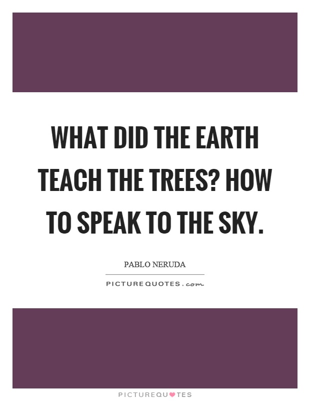 What did the earth teach the trees? How to speak to the sky Picture Quote #1