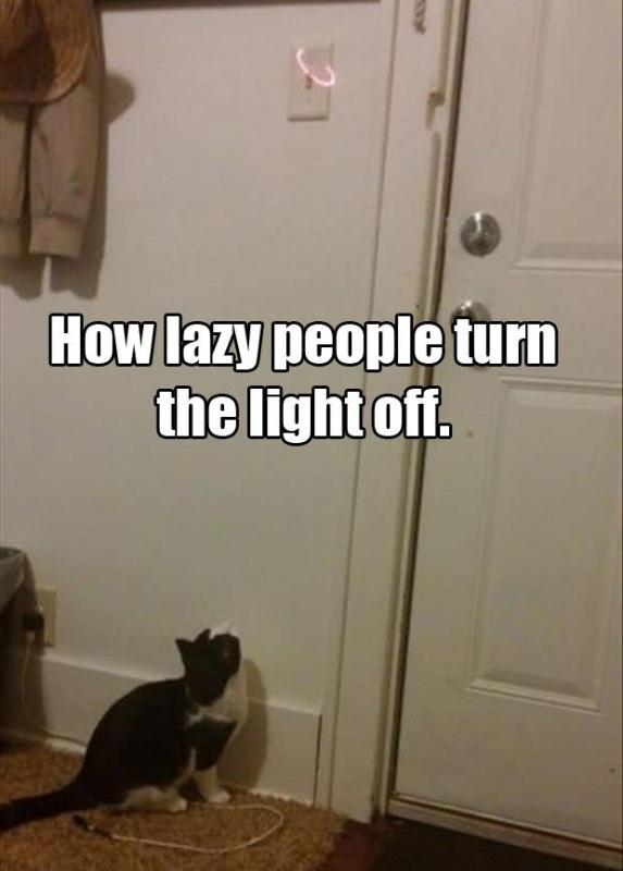 How lazy people turn the light off Picture Quote #1