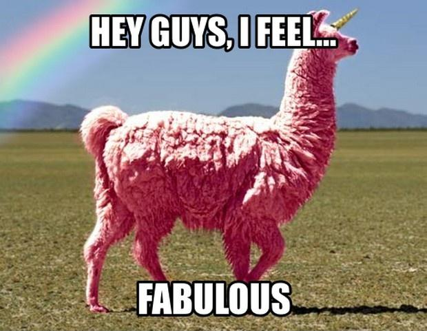 Hey guys, I feel fabulous Picture Quote #1