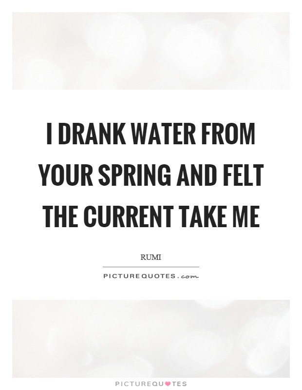 I drank water from your spring and felt the current take me Picture Quote #1