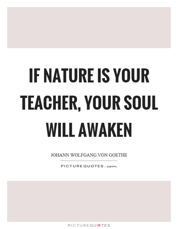 If nature is your teacher, your soul will awaken Picture Quote #1