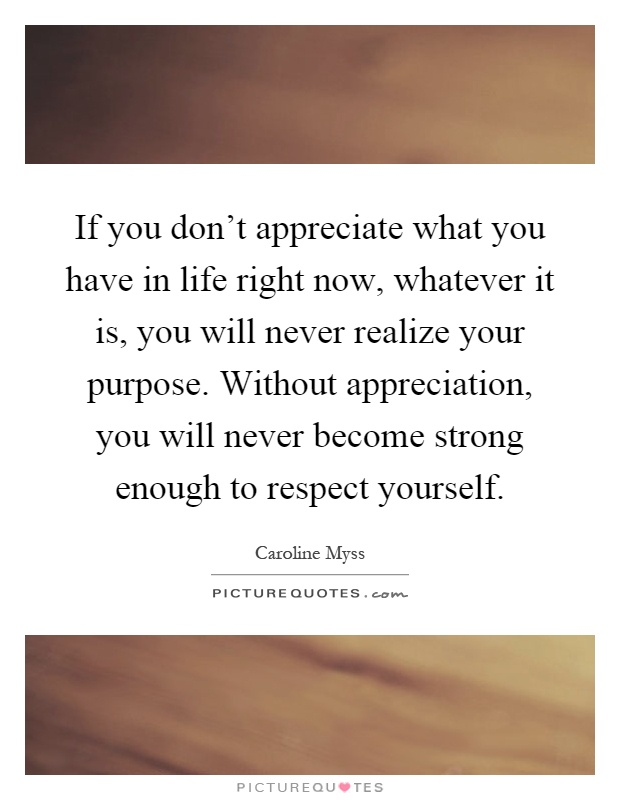 If you don't appreciate what you have in life right now, whatever it is, you will never realize your purpose. Without appreciation, you will never become strong enough to respect yourself Picture Quote #1