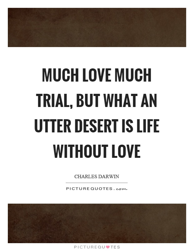 Life Without Love Quotes Enchanting Much Love Much Trial But What An Utter Desert Is Life Without