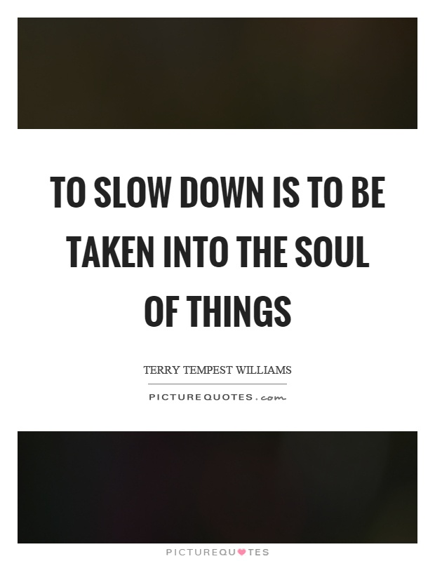 To slow down is to be taken into the soul of things Picture Quote #1