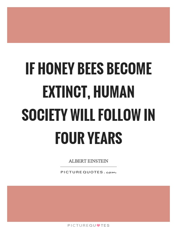 If honey bees become extinct, human society will follow in four years Picture Quote #1