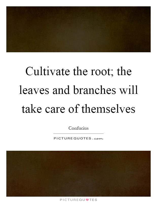 Cultivate the root; the leaves and branches will take care of themselves Picture Quote #1
