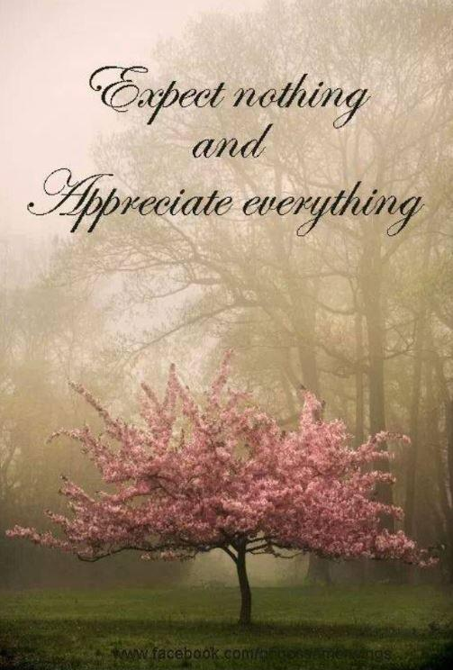 Expect nothing and appreciate everything Picture Quote #1