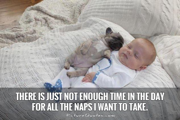 There is just not enough time in the day for all the naps I want to take Picture Quote #1