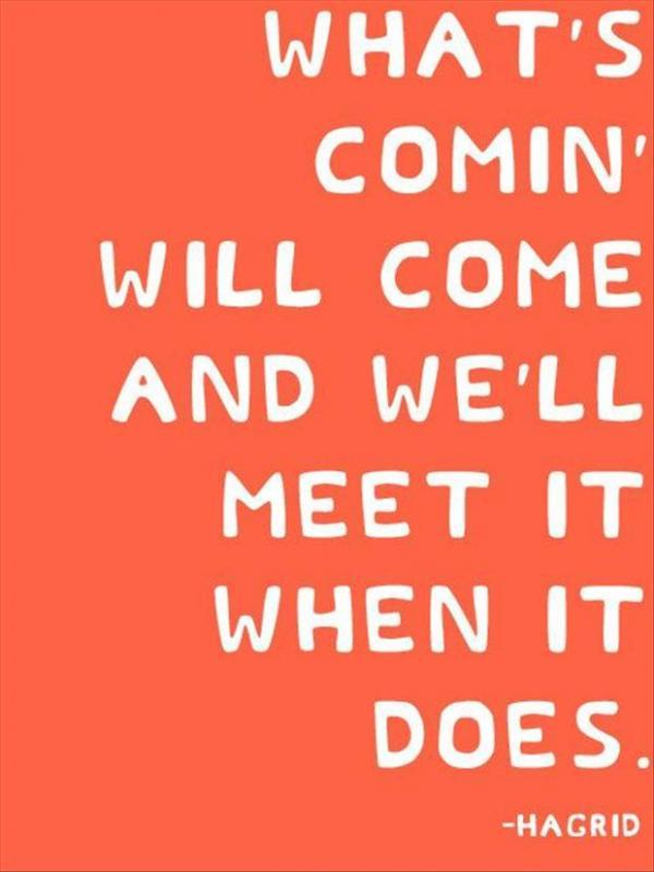 What's coming will come, and we'll meet it when it does Picture Quote #1
