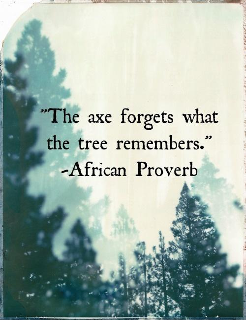 The axe forgets what the tree remembers Picture Quote #1