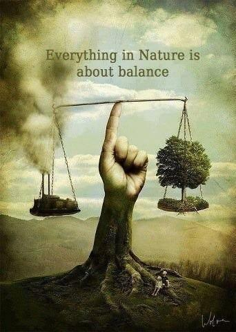 Everything in nature is about balance Picture Quote #1