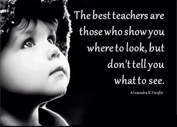 The best teachers are those who show you where to look, but don't tell you what to see Picture Quote #1