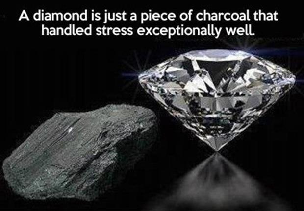 A diamond is just a piece of charcoal that handled stress exceptionally well Picture Quote #1