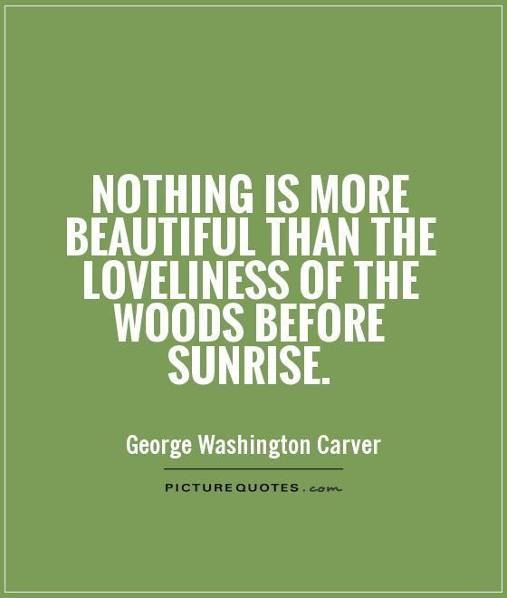 Nothing is more beautiful than the loveliness of the woods before sunrise Picture Quote #1