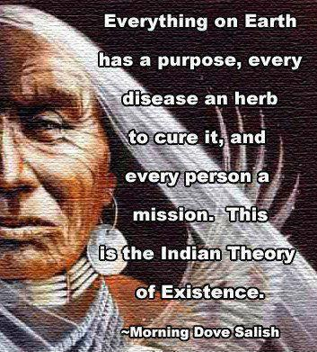 Everything on the Earth has a purpose, every disease an herb to cure it, and every person a mission. This is the Indian theory of existence Picture Quote #1