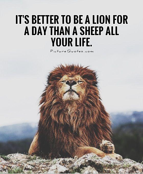 It's better to be a lion for a day than a sheep all your life. Picture Quote #1