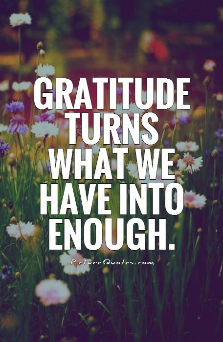 Gratitude turns what we have into enough Picture Quote #1
