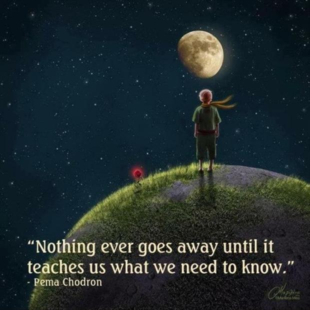 Nothing ever goes away until it teaches us what we need to know Picture Quote #1