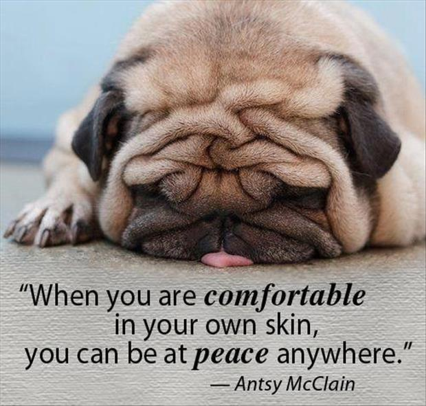 When you are comfortable in your own skin, you can be at peace anywhere Picture Quote #1