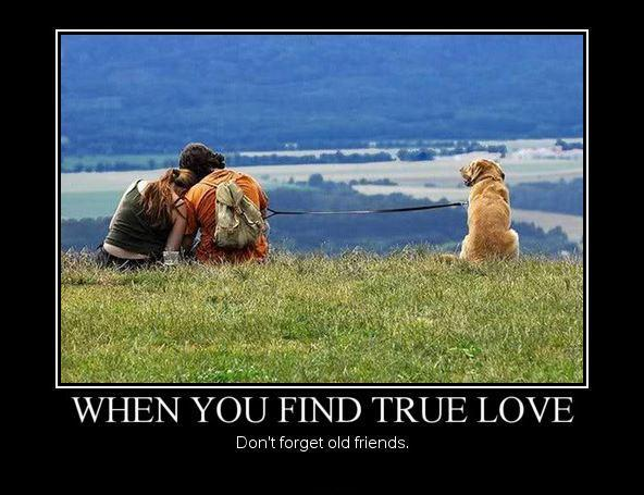 When you find true love don't forget old friends | Picture Quotes
