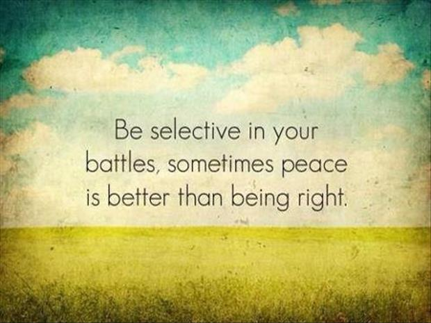Be selective in your battles, sometimes peace is better than being right Picture Quote #1