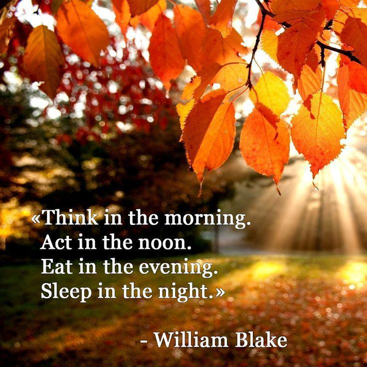 Think in the morning. Act in the noon. Eat in the evening. Sleep in the night Picture Quote #1