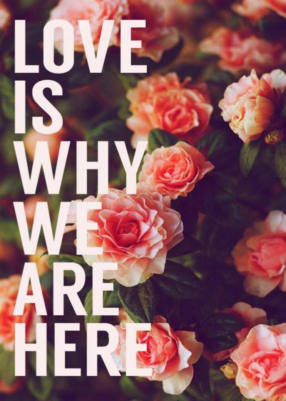 Love is why we are here Picture Quote #1