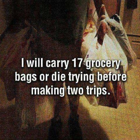 I will carry 17 grocery bags or die trying before making two trips Picture Quote #1