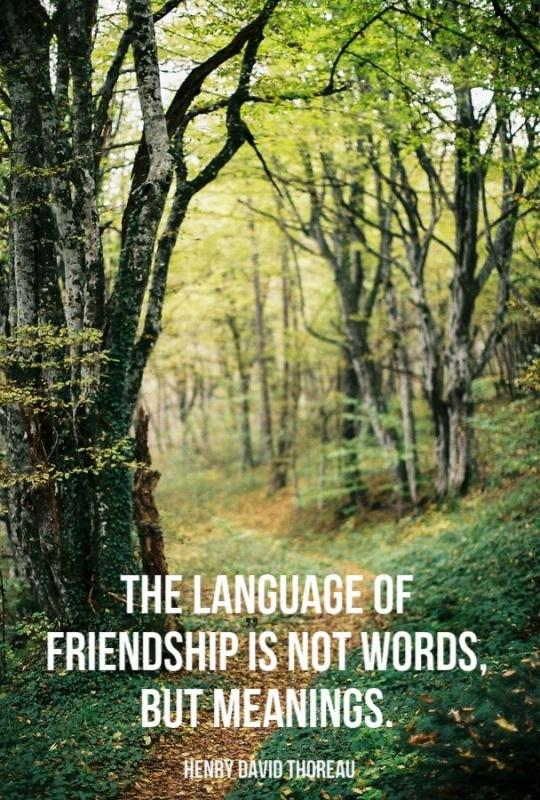 The language of friendship is not words but meanings Picture Quote #2