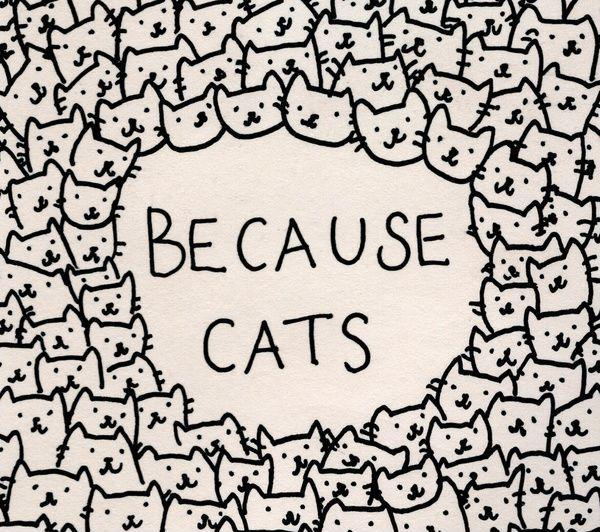 Because cats Picture Quote #1