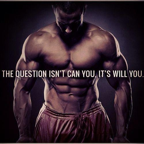 The question isn't can you, it's will you Picture Quote #1