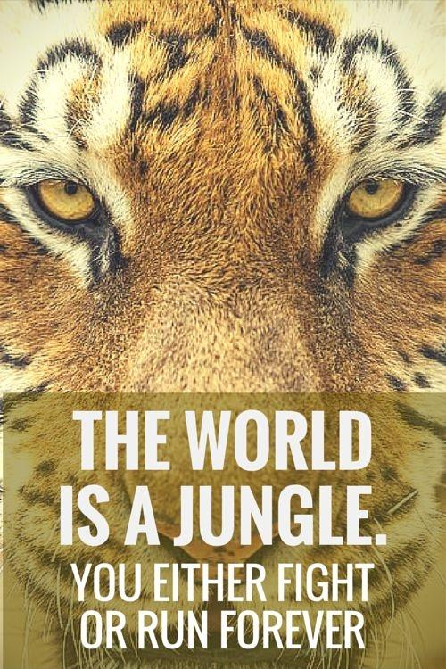The world is a jungle. You either fight or run forever Picture Quote #1