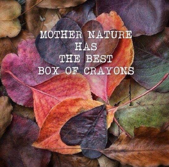Mother nature has the best box of crayons Picture Quote #1