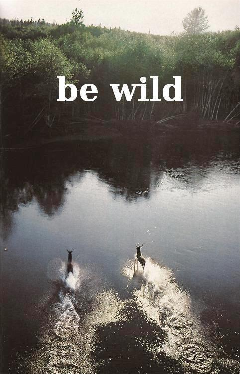 Be wild Picture Quote #1