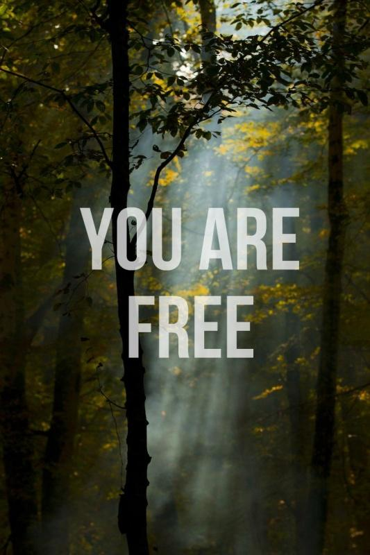 You are free Picture Quote #1