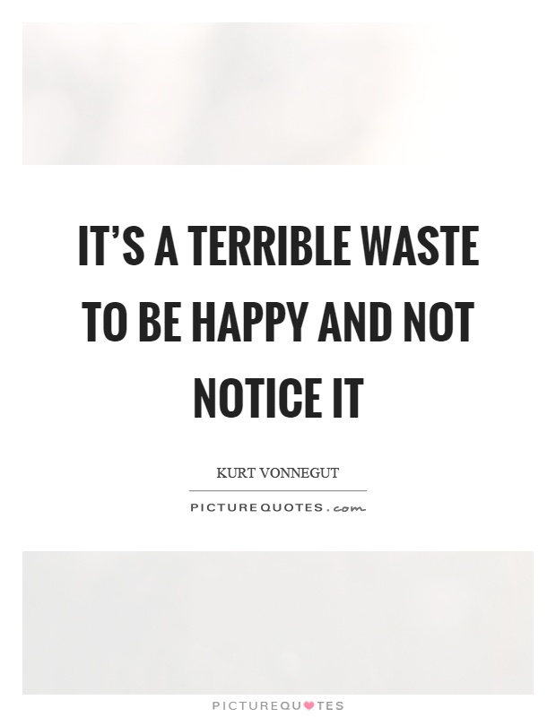 It's a terrible waste to be happy and not notice it Picture Quote #1