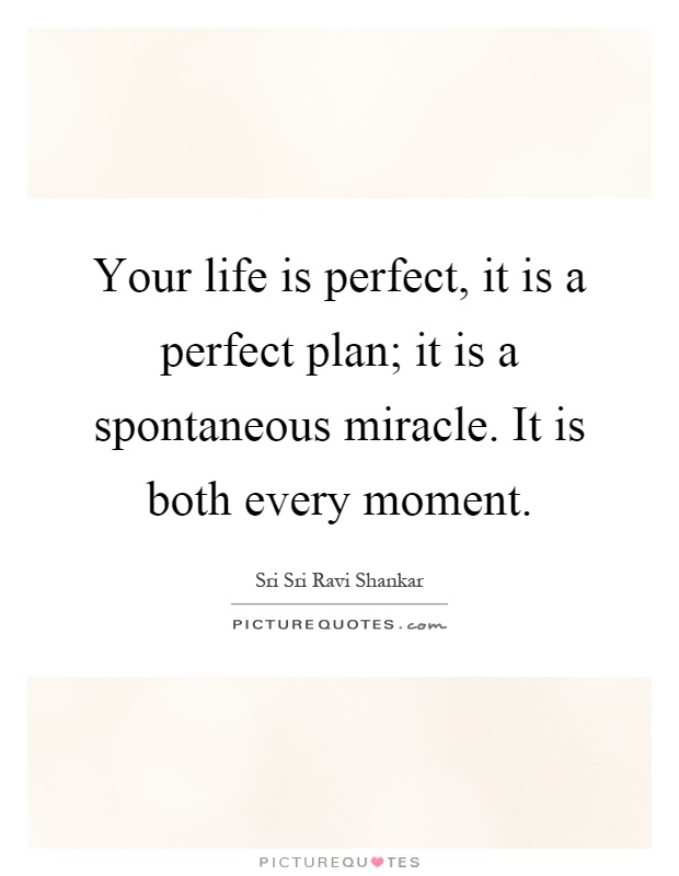 Your life is perfect, it is a perfect plan; it is a spontaneous miracle. It is both every moment Picture Quote #1