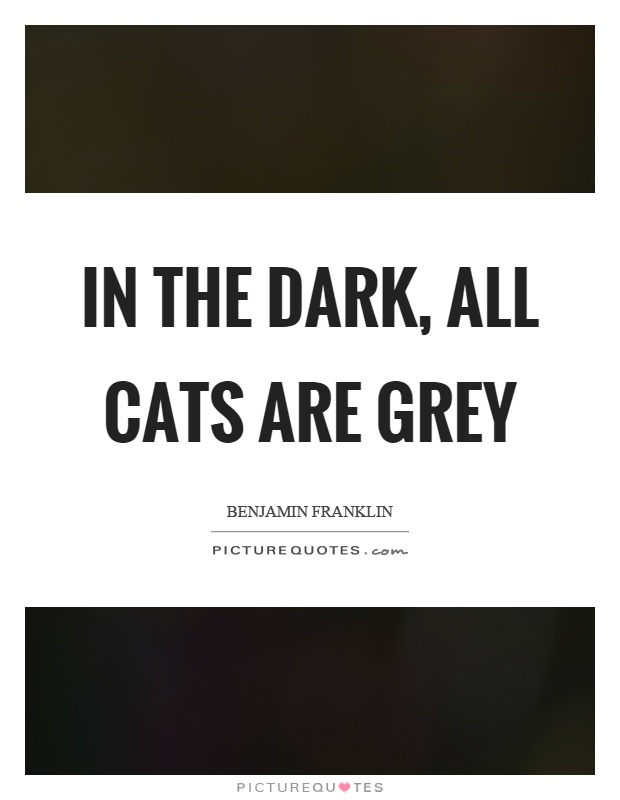In the dark, all cats are grey Picture Quote #1