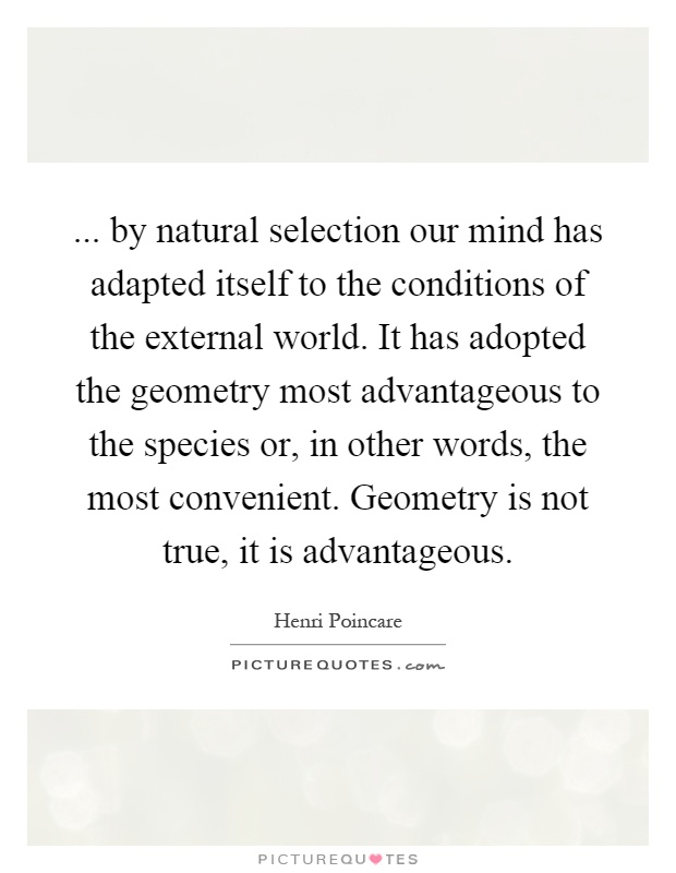 ... by natural selection our mind has adapted itself to the conditions of the external world. It has adopted the geometry most advantageous to the species or, in other words, the most convenient. Geometry is not true, it is advantageous Picture Quote #1