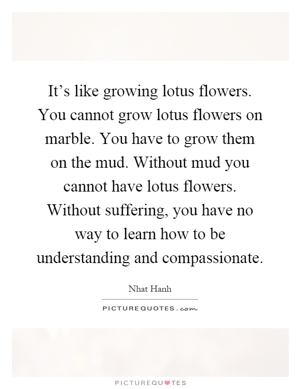 Its like growing lotus flowers you cannot grow lotus flowers its like growing lotus flowers you cannot grow lotus flowers on marble you have to grow them on the mud without mud you cannot have lotus flowers mightylinksfo