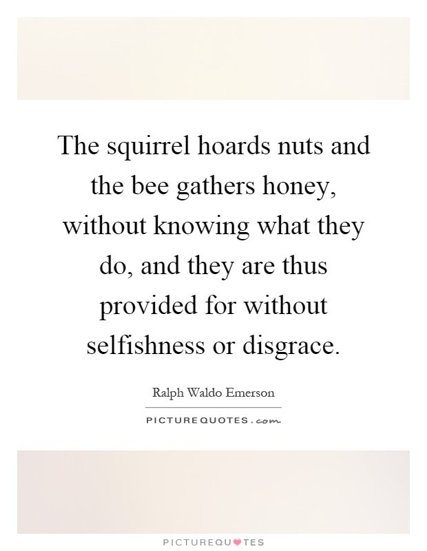 The squirrel hoards nuts and the bee gathers honey, without knowing what they do, and they are thus provided for without selfishness or disgrace Picture Quote #1